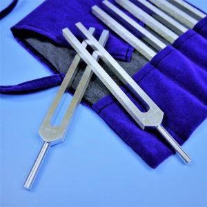 tuning fork healing | Whitney Wellness | Poway, CA